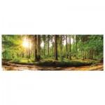 Puzzle   Aube dans la Forêt