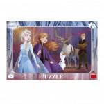 Puzzle Cadre - La Reine des Neiges 2