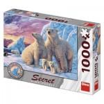 Secret Puzzle - Ours Polares