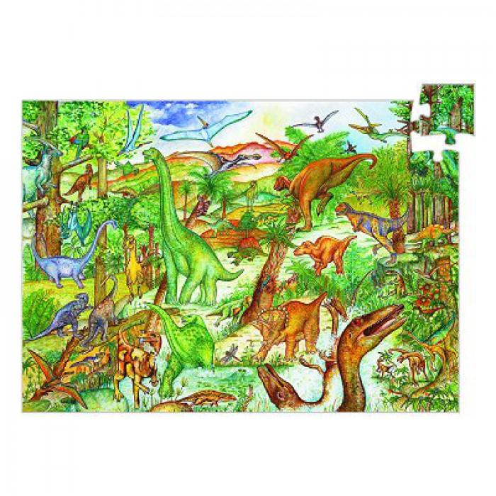 Poster et livret : Découverte dinosaures
