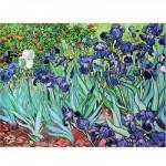 Puzzle  DToys-66916-VG03-(70241) Van Gogh Vincent - Iris