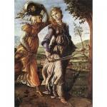 Puzzle  DToys-66954-RN03 Botticelli Sandro - Judith