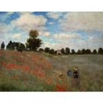 Puzzle  DToys-66961-IM02 Monet Claude - Les coquelicots
