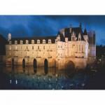 Puzzle  DToys-69535 Château de France - Château de Chenonceau
