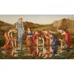 Puzzle  Dtoys-72733-BU01-(72733) Edward Burne-Jones: Le Miroir de Venus, 1875
