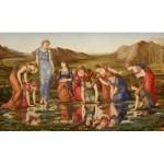 Puzzle  Dtoys-72733-BU01 Edward Burne-Jones: Le Miroir de Venus, 1875