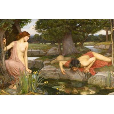 Puzzle Dtoys-75048 Waterhouse John William : Echo et Narcisse