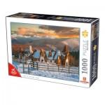 Puzzle  Dtoys-76052 Roumanie