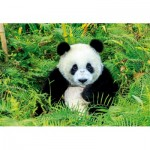 Puzzle  Educa-17082 Panda