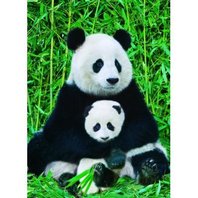 Puzzle Eurographics-6000-0173 La Famille Panda