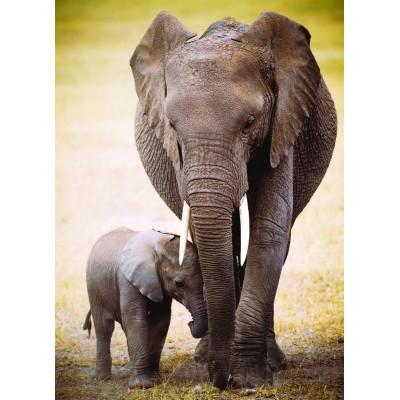 Puzzle Eurographics-6000-0270 L'éléphant et l'éléphanteau