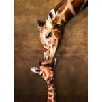 Puzzle  Eurographics-6000-0301 La maman girafe et son girafon