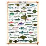 Puzzle  Eurographics-6000-0313 Les poissons