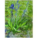 Puzzle  Eurographics-6000-0380 Van Gogh Vincent : Les iris