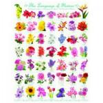 Puzzle  Eurographics-6000-0579 Le language des Fleurs