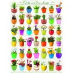 Puzzle  Eurographics-6000-0654 Cactus et Plantes Succulentes