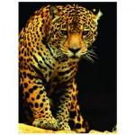 Puzzle  Eurographics-6000-1163 Leopard