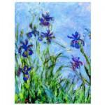 Puzzle  Eurographics-6000-2034 Claude Monet : Iris (détail)