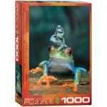 Puzzle  Eurographics-6000-3004 3 Grenouilles aux Yeux Rouges