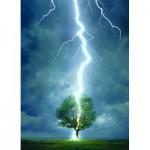 Puzzle  Eurographics-6000-4570 Foudre frappant un arbre
