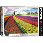 Puzzle  Eurographics-6000-5326 Champ de Tulipes aux Pays-Bas