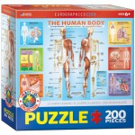 Puzzle  Eurographics-6200-1000 Le Corps Humain
