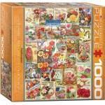 Puzzle  Eurographics-8000-0806 Catalogues de Graines de Fleurs