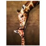 Puzzle  Eurographics-8500-0301 Le baiser de maman Girafe