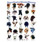 Puzzle  Eurographics-8500-1510 Race de de chiens