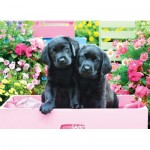Puzzle   Pièces XXL - Black Labs in Pink Box