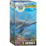 Puzzle   Save the Planet - Dolphins
