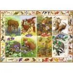 Puzzle  Jumbo-11200 Sarah Adams - Seasonal Wildlife