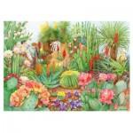 Puzzle  Jumbo-11254 The Flower Show - Desert Plants