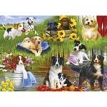 Puzzle   Playful Pups