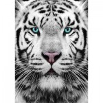 Puzzle  Gold-Puzzle-61512 Tigre de Sibérie