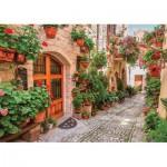 Puzzle  Gold-Puzzle-61574 Ruelle en Italie