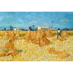 Puzzle  Grafika-Kids-00022 Pièces XXL - Vincent Van Gogh : Moissons en Provence, 1888