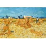 Puzzle  Grafika-Kids-00024 Vincent Van Gogh : Moissons en Provence, 1888