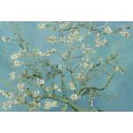 Puzzle  Grafika-Kids-00040 Pièces XXL - Vincent van Gogh : Amandier en Fleurs, 1890