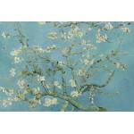Puzzle  Grafika-Kids-00042 Vincent van Gogh : Amandier en Fleurs, 1890