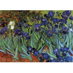 Puzzle  Grafika-Kids-00062 Van Gogh Vincent : Les Iris, 1889