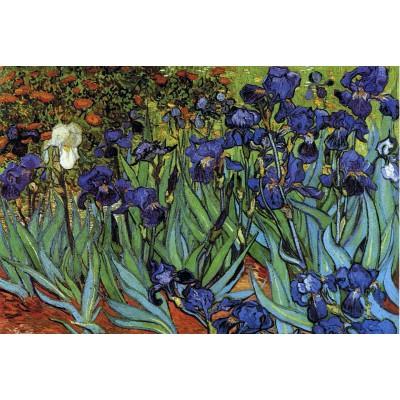Puzzle Grafika-Kids-00063 Van Gogh Vincent : Les Iris, 1889