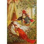 Puzzle  Grafika-Kids-00118 Carl Offterdinger : La Belle au Bois Dormant