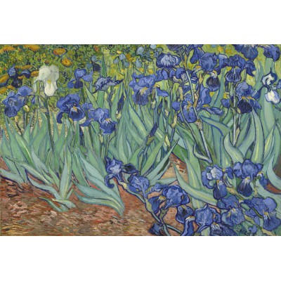 Puzzle Grafika-Kids-00196 Pièces XXL - Van Gogh Vincent : Les Iris, 1889