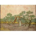 Puzzle  Grafika-Kids-00443 Van Gogh Vincent : Femmes ramassant des Olives, 1889