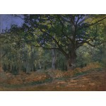Puzzle  Grafika-Kids-00471 Claude Monet: Fontainebleau, 1865