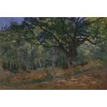 Puzzle  Grafika-Kids-00475 Pièces XXL - Claude Monet: Fontainebleau, 1865