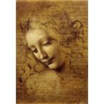 Puzzle  Grafika-Kids-00712 Léonard de Vinci : Visage de Giovane Fanciulla, 1508