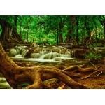 Puzzle  Grafika-Kids-00926 Cascade dans la Forêt