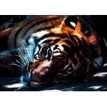 Puzzle  Grafika-Kids-00964 Pièces magnétiques - Tigre